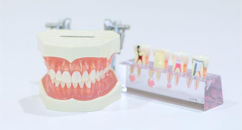 変わりゆく審美治療に対する日本人の意識。平尾近隣の歯医者・ホワイトニングや審美治療ならお任せください。